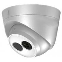 Camera IP HDParagon HDS-2110IRP (1 MP)
