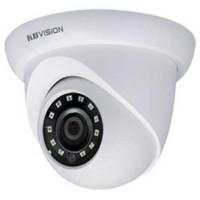Camera IP 2MP dạng dome hồng ngoại 30m Kbvision model KR-N20D